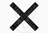X Ten Biennial